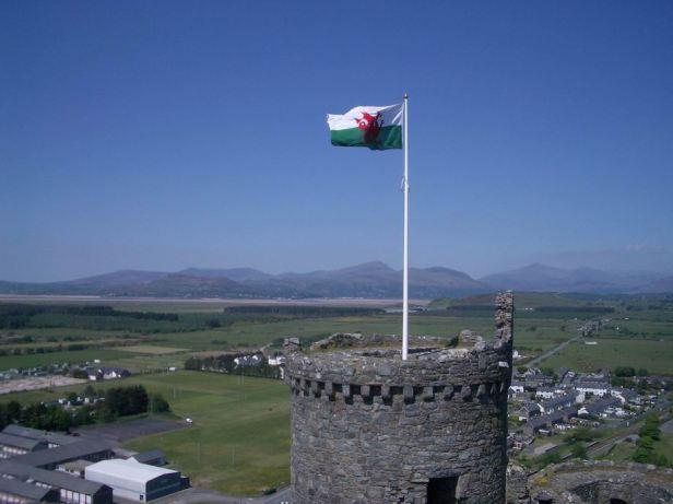 2008-06-10 216r