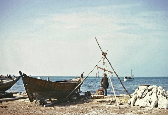 Everyday Life of Doha in the 1960s (5)